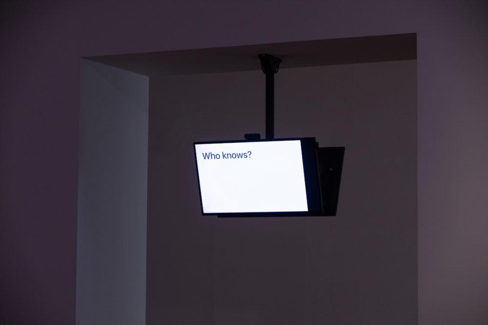 Jonas Lund Daejeon Biennale 2020 — A.I., Sunshine Misses Windows