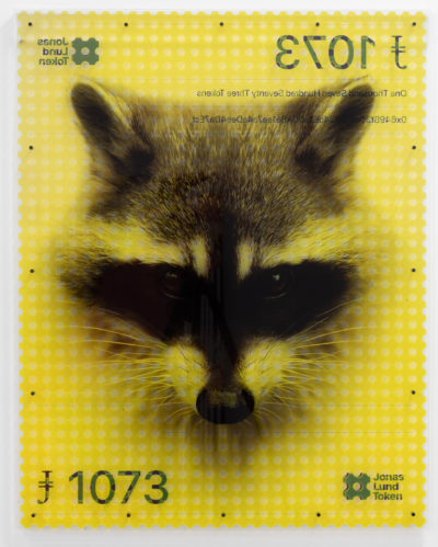Jonas Lund JLT: Proposal #28: Raccoon